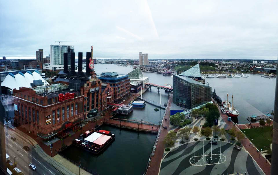 Baltimore Harbor, inspiration for a custom corporate art installation